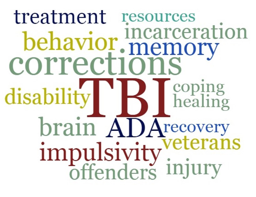 Word cloud with words representing TBI and corrections.